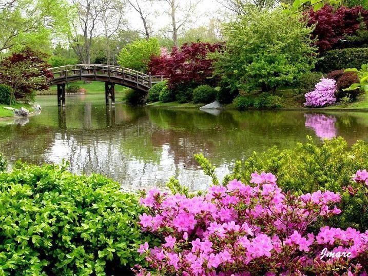 Scenery spring pictures photos paysages fleuris for Jardins fleuris paysagiste